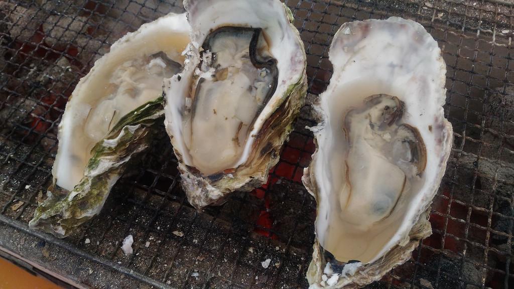 能登の牡蠣祭り!穴水じゃなくて、七尾湾の方に遊びに行きました!!