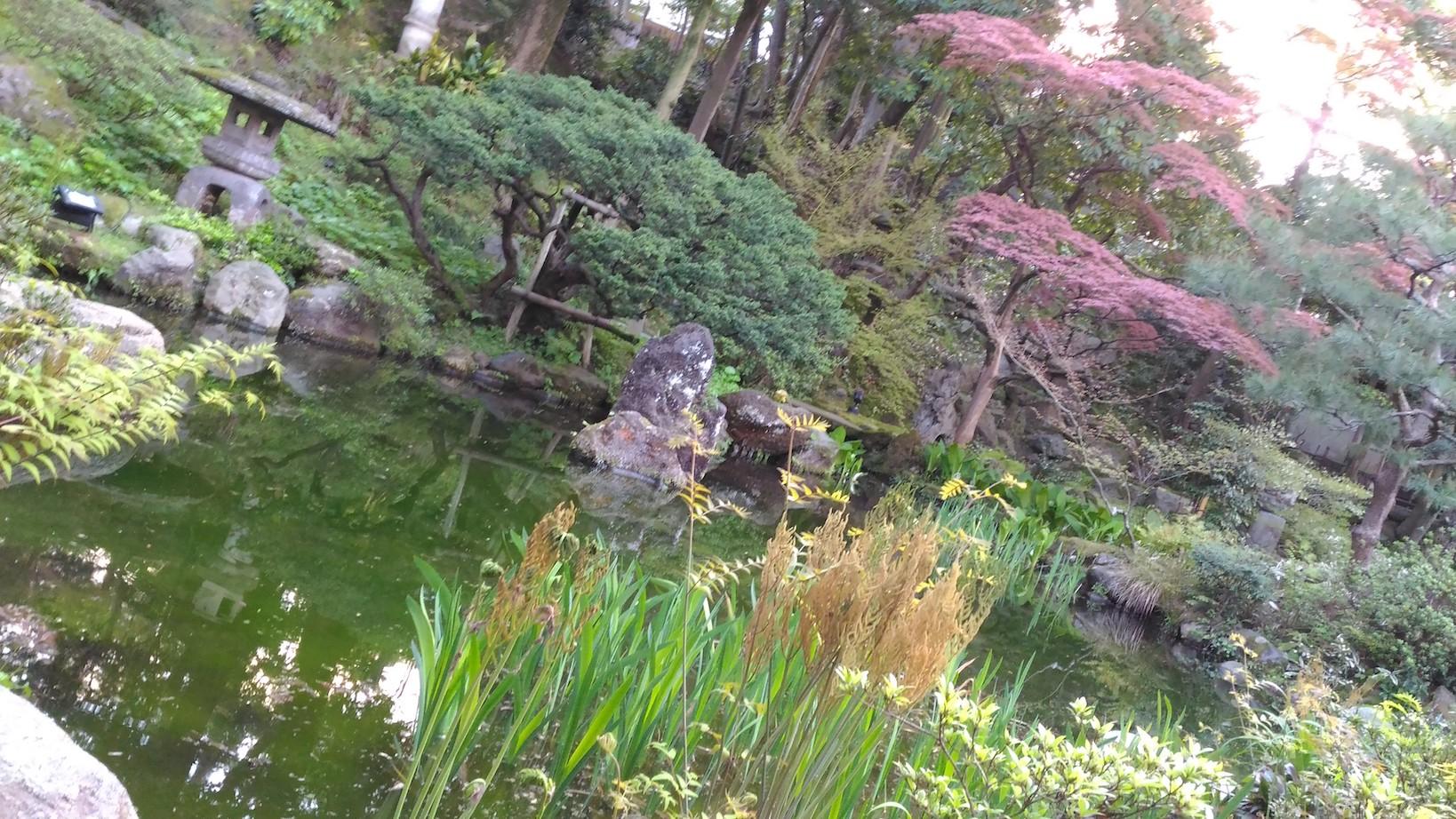 美しすぎる庭園「玉泉園」は兼六園よりも歴史がある!