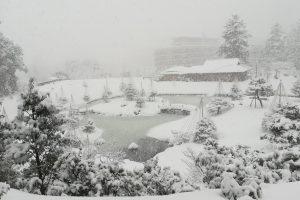 大雪 金沢